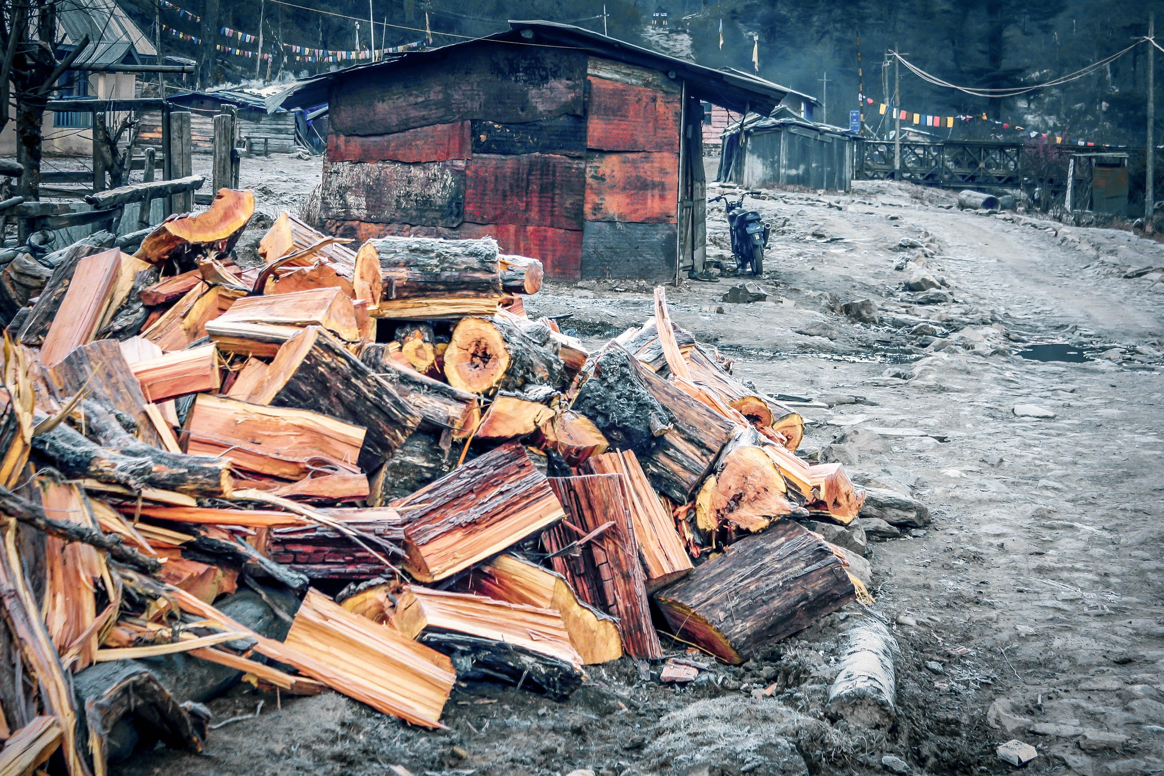 Arunachal (33 of 37)