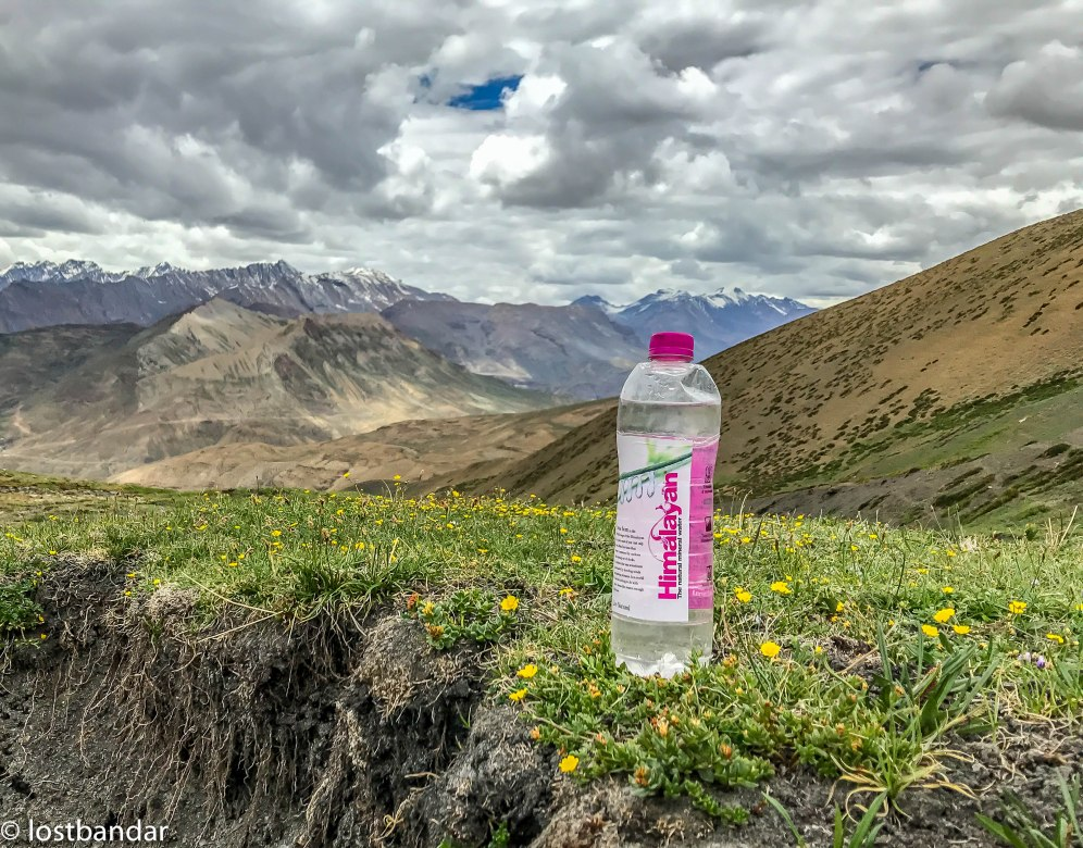 Himalayan (1 of 1)